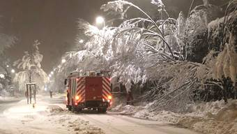 Der grosse Schnee im Limmattal