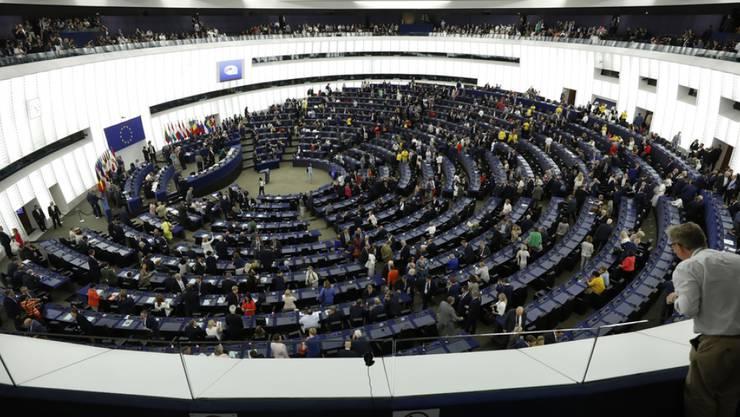 Das EU-Parlament rief in Strassburg den Klimanotstand aus. (Archivbild)