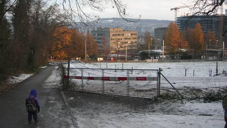 Schlittelweg Üetliberg: Ein Zaun sperrt diesen Winter den Zielschuss ab – zur Bahnstation Triemli kommen Schlittler nur zu Fuss.