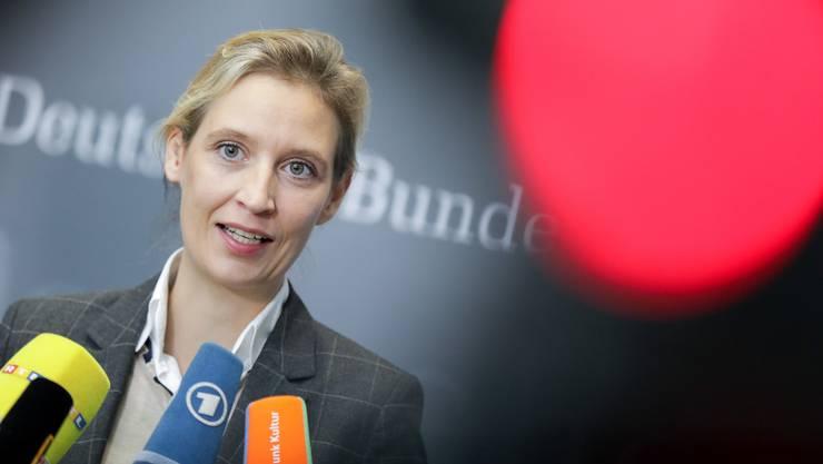 Alice Weidel hat unerlaubt Spenden aus dem Ausland erhalten. Die Spur führt nach Zürich.