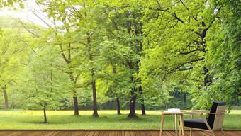 Eine Tapete mit Waldmotiven lässt den Betrachter sofort in ein wohliges Gefühl eintauchen.