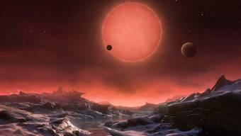 So könnte nach einer Künstler-Impression einer der drei entdeckten Planeten aussehen.
