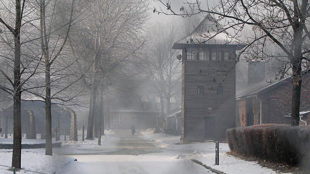 Zwei Belgier hatten es auf den Zaun rund um das Konzentrationslager Auschwitz abgesehen - nun müssen sie vor Gericht.