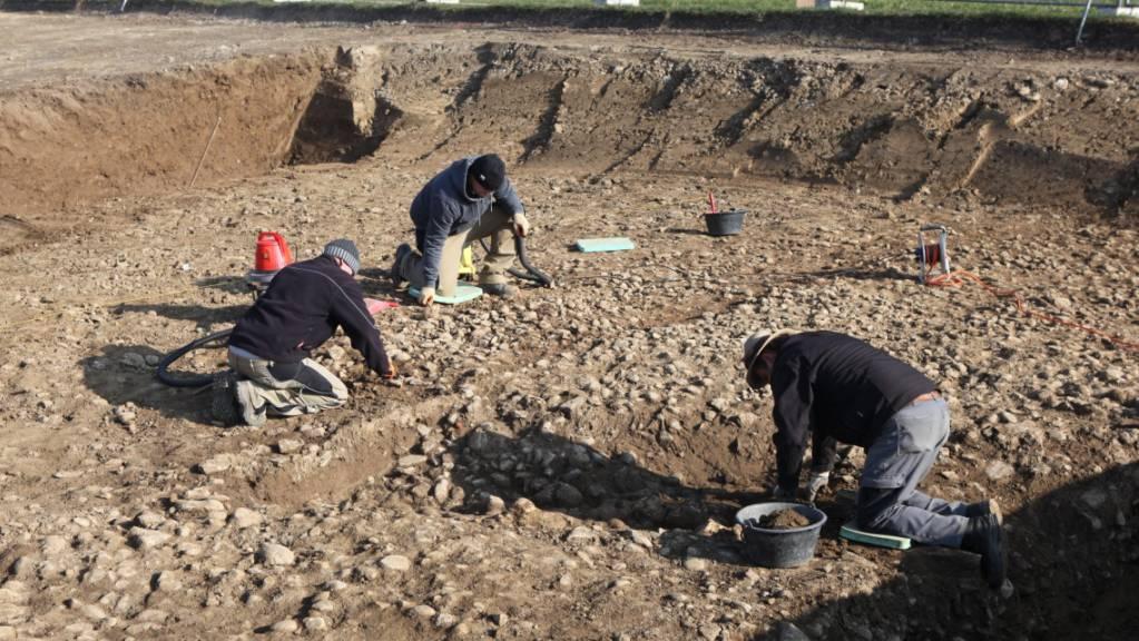Der in Seengen AG entdeckte römische Strassenabschnitt ist rund sieben Meter breit.