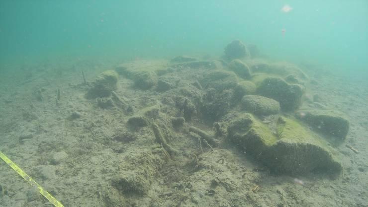 Sicht auf die Fundstelle Beinwil-Aegelmoos. Die Furche in der Mitte schmerzt die Archäologen. Sie ist das Ergebnis einer unerlaubten Ankerung eines Bootes in der Uferschutzzone und hat Teile der obersten Kulturschicht zerstört.