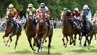 Pferderennen: Erster Renntag im Aarauer Schachen