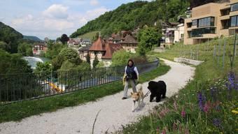 Hunde sollen auf dem Weg oberhalb des Umfahrungstunnels an die Leine.