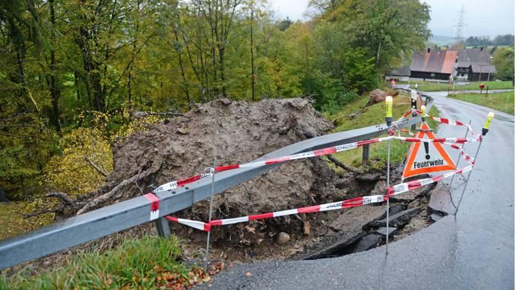 Bachtel, ZH-Oberland.