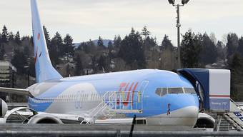Wegen des Ausfalls der Boeing-Maschinen vom Typ 737 erleidet Tui einen deutlichen Gewinnrückgang. (Archivbild)