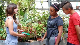 Dem Berufsbildungszentrum Niederlenz, wo auch Zierpflanzengärtner ausgebildet werden, fehlt ab Mitte 2019 der Dachverband Schweizerischer Gemeinnütziger Frauen als Trägerschaft.