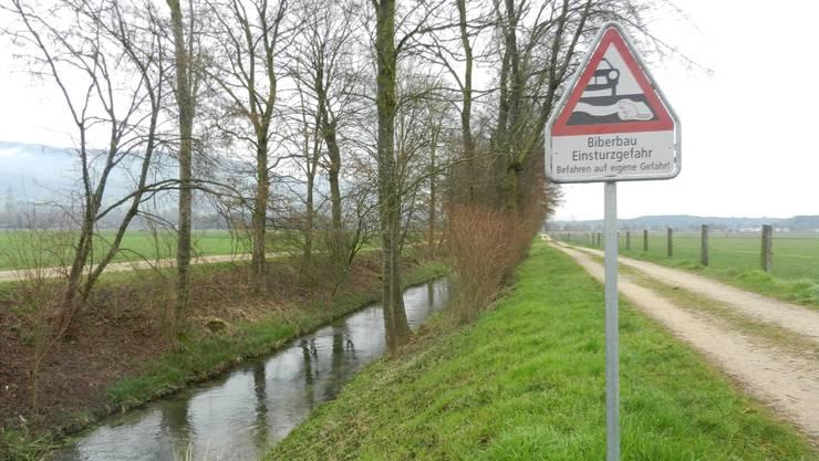 Die Landwirte müssen die Flurwege trotz der Warnung und der Gefahr mit ihren Maschinen befahren.