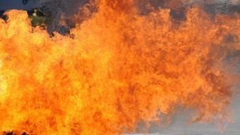 Wöchentlich sollen drei Kunstwerke von den Flammen zerstört werden (Symbolbild)