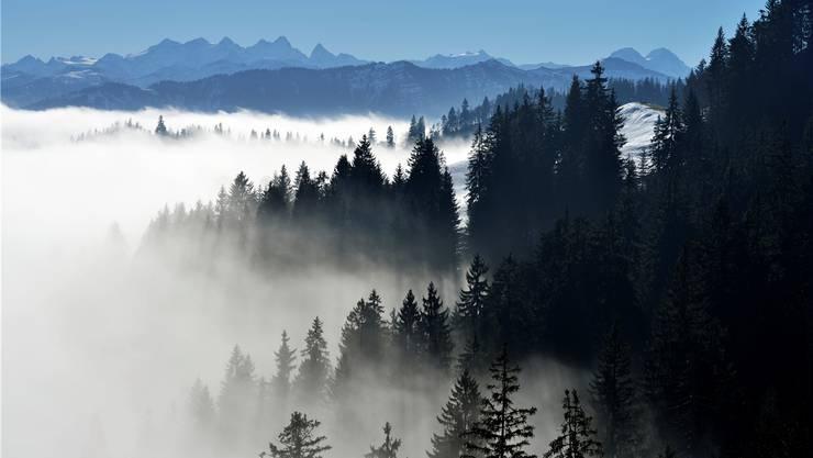 Raus aus dem Nebelmeer.