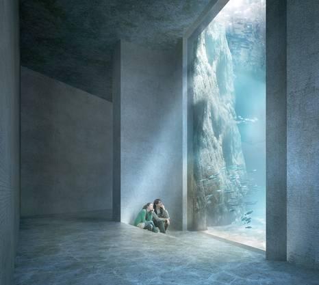 Der Zolli möchte mit dem Ozeanium «das Engagement in den Natur- und Artenschutz fördern».