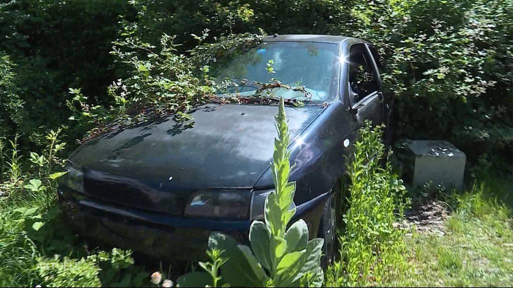 Verwachsener Fiat steht seit Jahren auf Parkplatz in Suhr