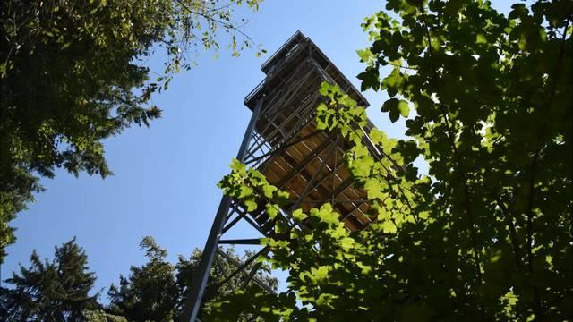 Maiengrün Turm