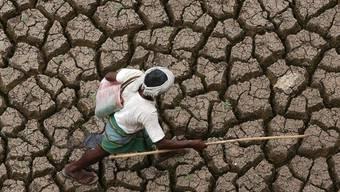 Wegen des Klimawandels droht Nahrungsknappheit, hier ein Bild aus Indien. (Symbolbild)