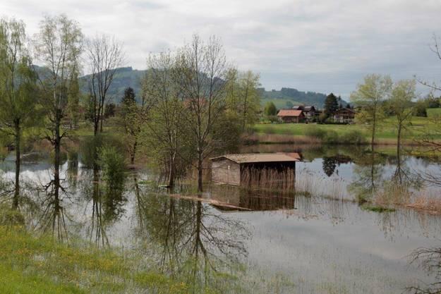 Thunersee hat Hochwasser-Pegel erreicht.