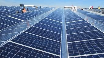 Die preisgekrönte Solarstromanlage auf dem Dach der Ferrowohlen in Wohlen AG.