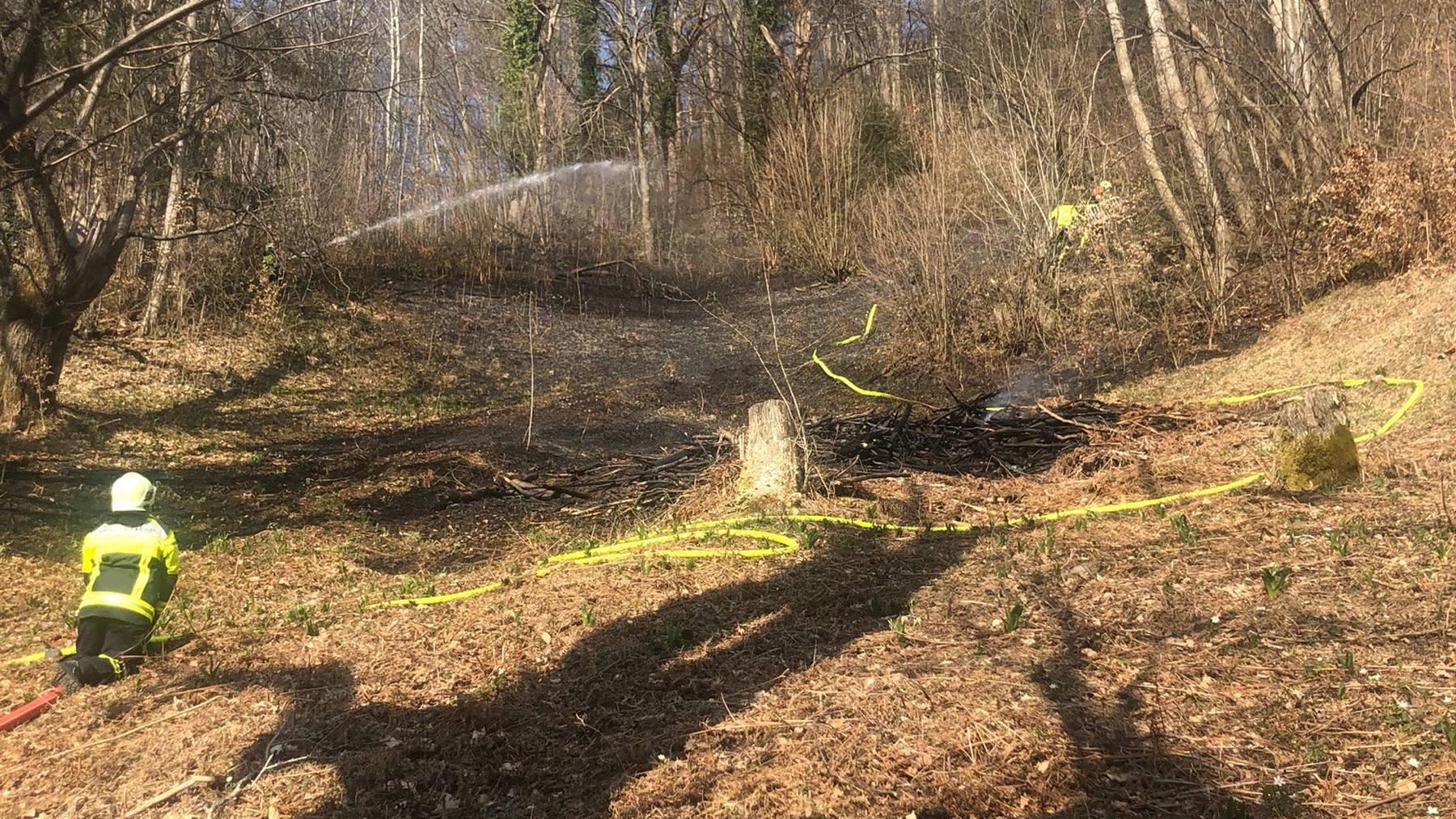 Flächenbrand in einem Waldstück bei Arth im Kanton Schwyz.