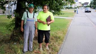 Rudolf Letzkus (links) und Markus Bur ärgern sich, dass der Kanton ihr Landwirtschaftsland für eine Bushaltestelle braucht und den Baum fällen wird. Im Plan unten sind bereits die beiden neuen Bäume (links) ausgewachsen eingezeichnet.