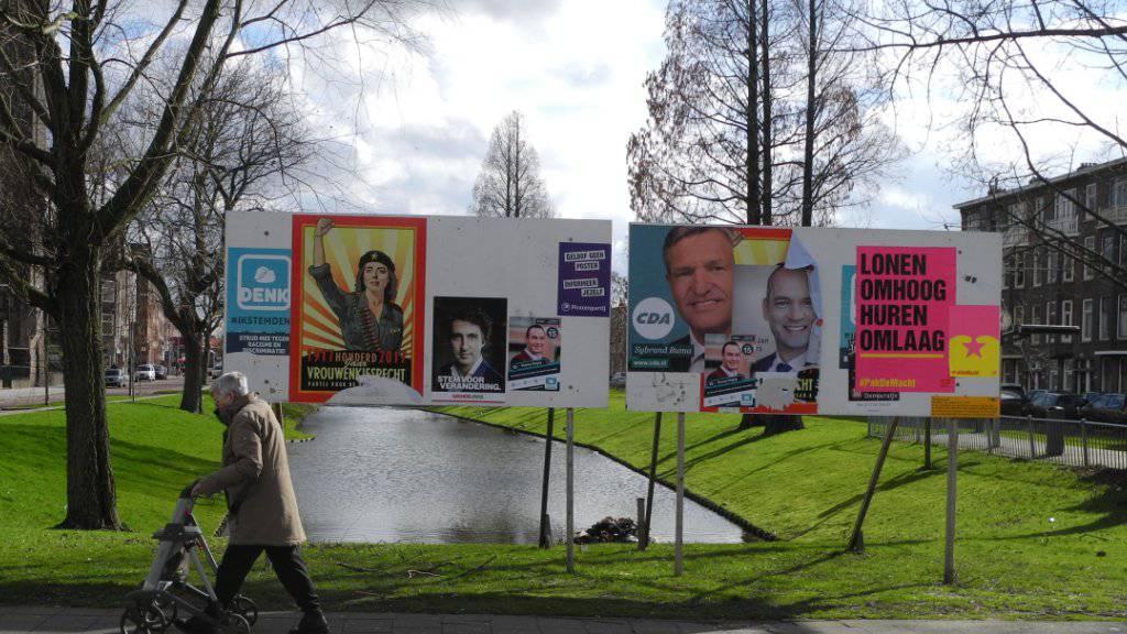 Am Mittwoch wird gewählt: In der letzten Umfrage vor der Parlamentswahl hat die liberale Regierungspartei VVP die rechtspopulistische PVV von Geert Wilders.