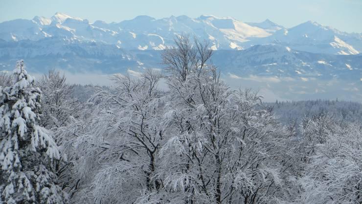 Blick übers Waldenburgertal