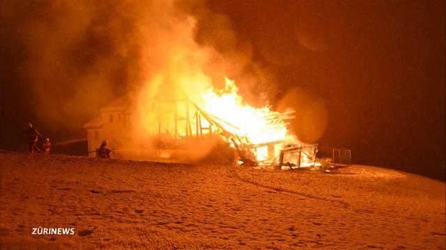 37 Tiere sterben bei Scheunenbrand
