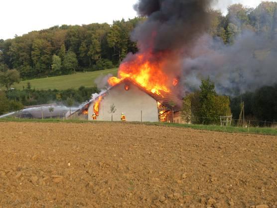 Nachbarn hatten den Brand bemerkt...