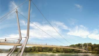 Wasservögel wie Schwäne könnten die Seilkonstruktion, vor allem die dünnen senkrechten Seile, nicht wahrnehmen, sagt Birdlife Aargau. Visualisierung zvg