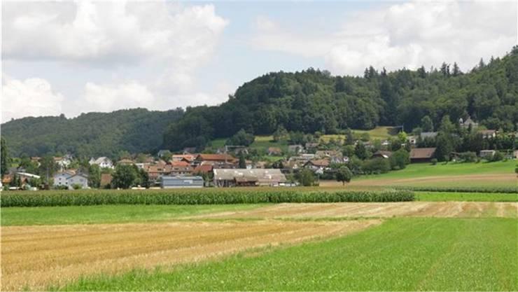 Dorfansicht von Moosleerau.