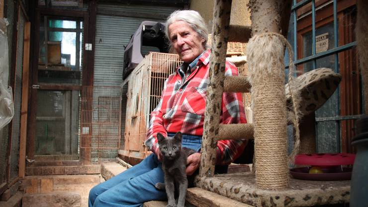 Maria Meier mit der Katze eines Mieters, der auf ihrem Hof ebenfalls Tiere hält. Das Jungtier ist eine der letzten Freuden, die ihr geblieben ist.