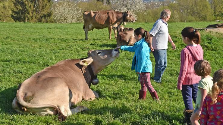 In den Frühlingsferien konnten die Kinder in der Hofchäsi in Gretzenbach lernen, wie Käse hergestellt wird.