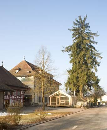 Schafisheim: Holzpavillon der Steiner-Schule, von Schülern mitgestaltet.