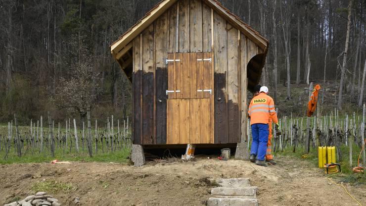 Die Lernenden von Walo Bertschinger errichteten auch eine Natursteintreppe und renovierten ein Rebhüsli.