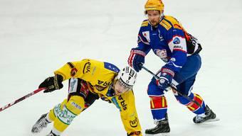 Treffen in den Playoffs aufeinander: die ZSC Lions (rechts, hier: Robert Nilsson) und der SC Bern (hier: Luca Hischier).
