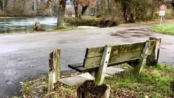 Das Gelände rechts des Weges an der Reuss in Fischbach-Göslikon soll künftig als Naturschutzgebiet gelten.