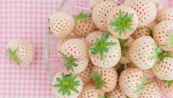 Blickfang: Ananas-Erdbeeren sind weiss mit roten Nüsschen.Shutterstock
