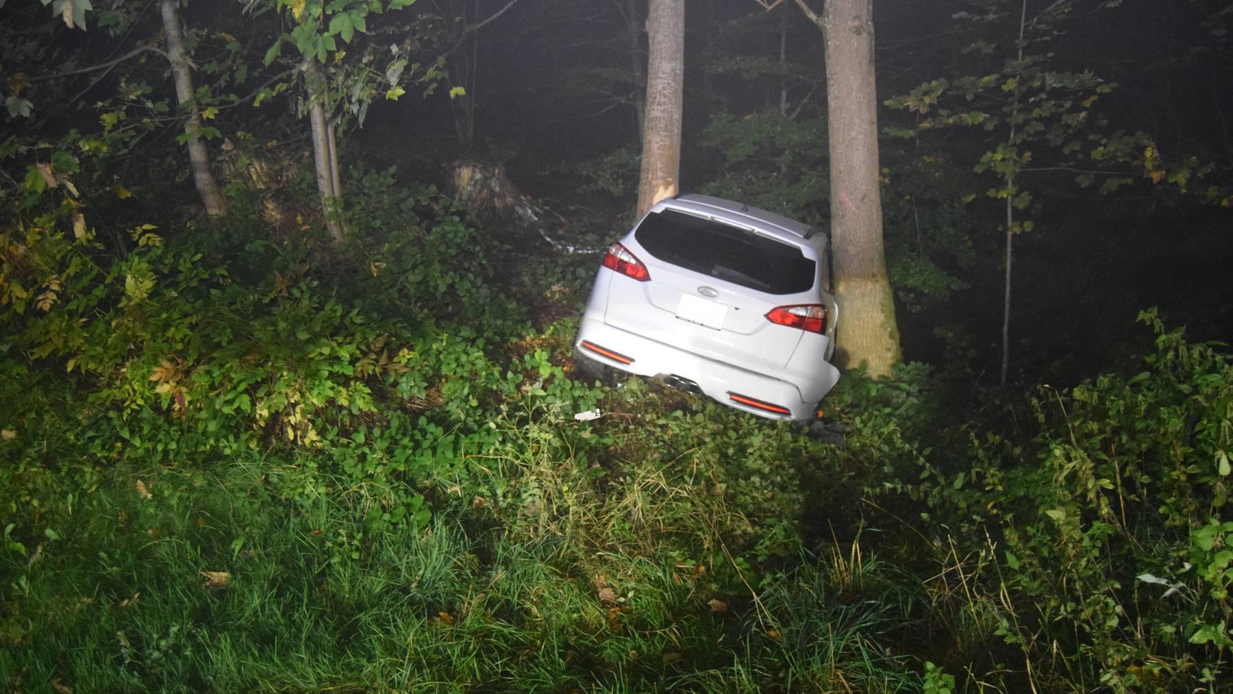 Das Auto kollidierte wenige Meter neben der Strasse mit einem Baum.
