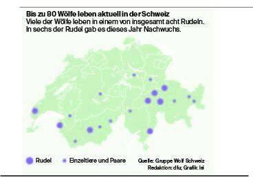 Quelle: Gruppe Wolf Schweiz / Redaktion: dfu / Grafik: lsi