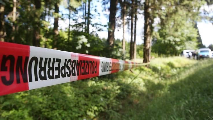 In einem Wald hat ein Pilzsammler im Sommer 2016 ein Skelett gefunden. Es handelte sich um die seit 15 Jahren vermisste Peggy.