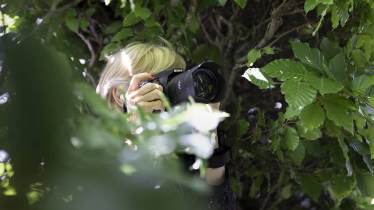 Unspektakulär und ohne technischen Schnickschnack Detektive beobachten mit handelsüblichen Kameras.