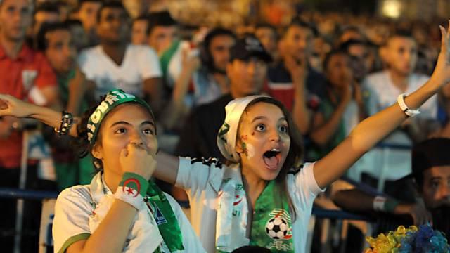 Jubeln und Bangen beim Public Viewing in Algier