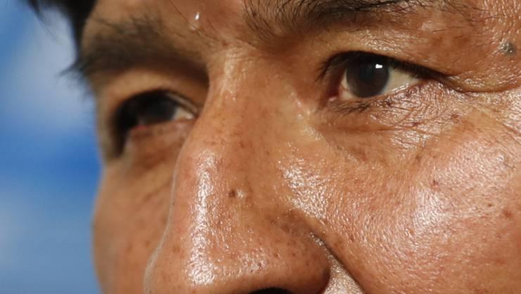Wahlbetrüger im mexikanischen Exil: der vom Militär zum Rücktritt gedrängte frühere bolivianische Präsident Evo Morales.