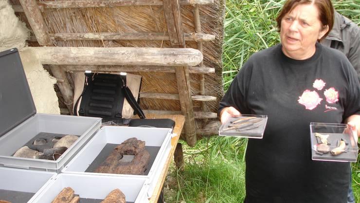 Kantonsarchäologin Elisabeth Bleuer zeigt beim Seenger Pfahlbauhaus Fundstücke aus dem Gebiet Aegelmoos vor Beinwil am See. tf Kantonsarchäologin Elisabeth Bleuer zeigt beim Seenger Pfahlbauhaus Fundstücke aus dem Gebiet Aegelmoos vor Beinwil am See. tf