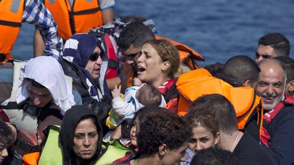 Syrische Flüchtlinge erreichen die griechische Insel Lesbos.