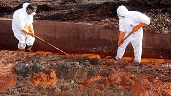 Rettungsarbeiter beseitigen den ausgelaufenen Giftschlamm in Ungarn (Archiv)