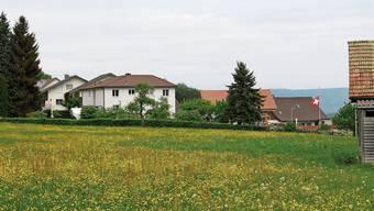 Für 4,39 Millionen Franken will die Gemeinde Bergdietikon das Areal Hintermatt an die Oase Holding AG verkaufen.