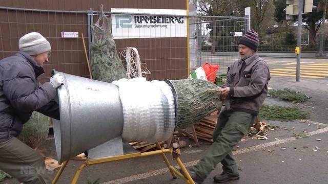 Ansturm auf letzte Weihnachtsbäume