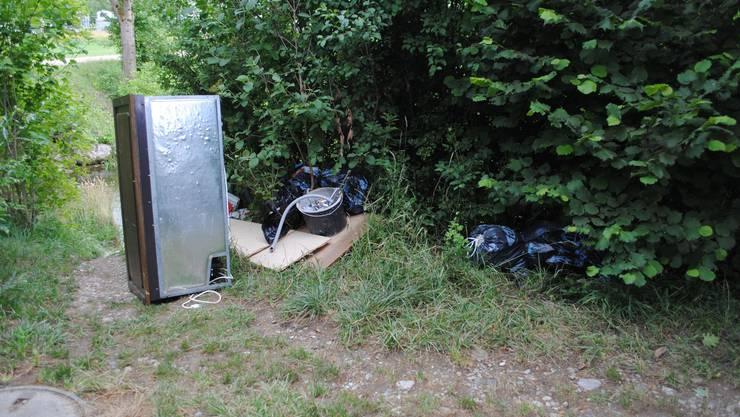 Diverser Abfall wurde auf einem Naturweg hinter dem Schwimmbad abgeladen
